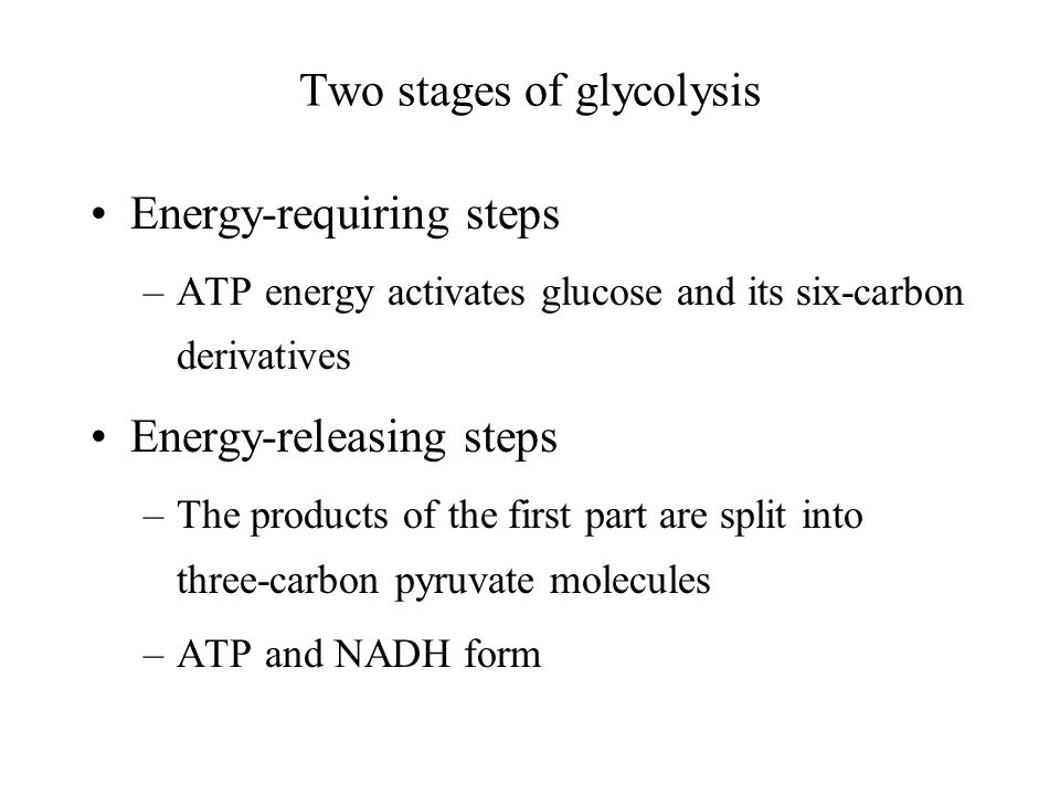 Two stages of glycolysis