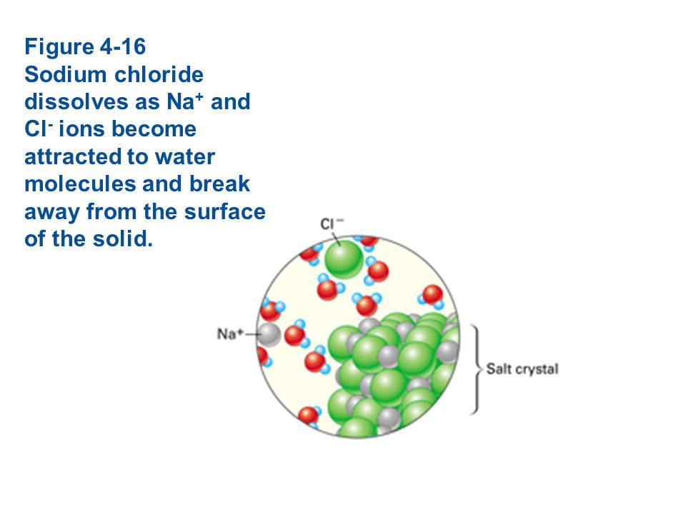 Figure 4-16 Sodium chloride dissolves as Na+ and Cl- ions become attracted to water molecules and break away from the surface of the solid.