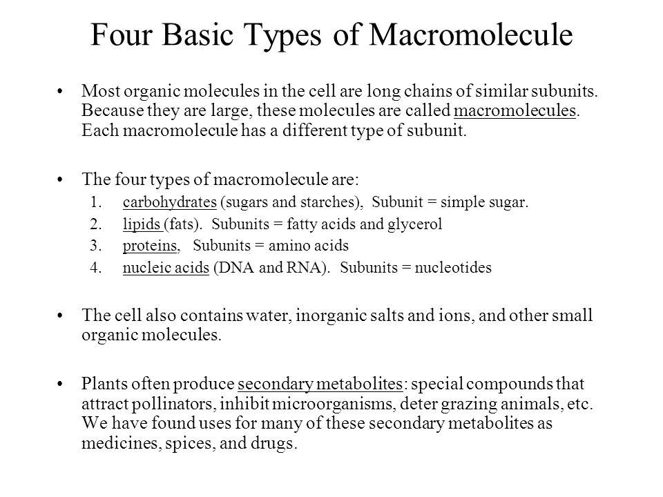 Four Basic Types of Macromolecule