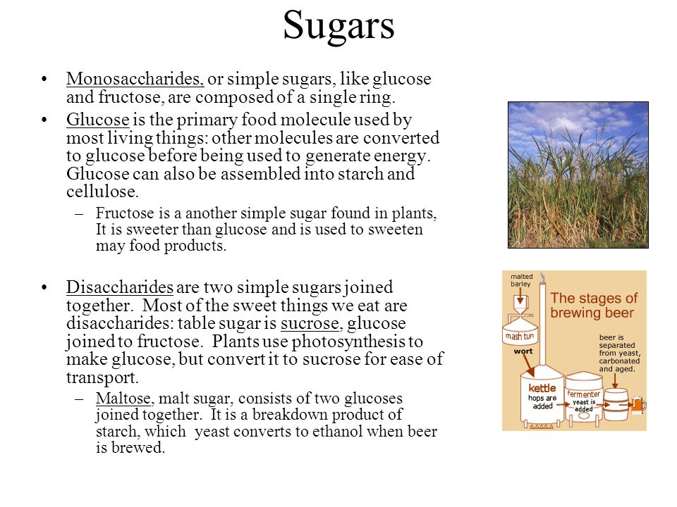 Sugars Monosaccharides, or simple sugars, like glucose and fructose, are composed of a single ring.
