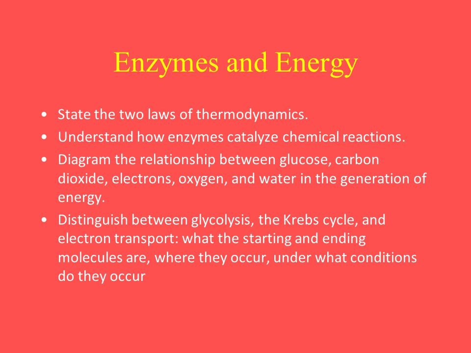 Enzymes and Energy State the two laws of thermodynamics.