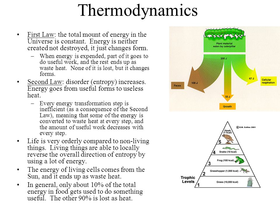 Thermodynamics First Law: the total mount of energy in the Universe is constant. Energy is neither created not destroyed, it just changes form.