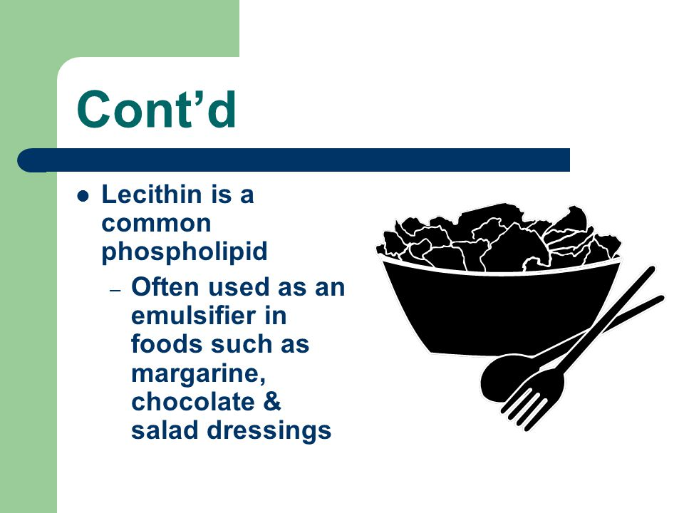 Cont'd Lecithin is a common phospholipid