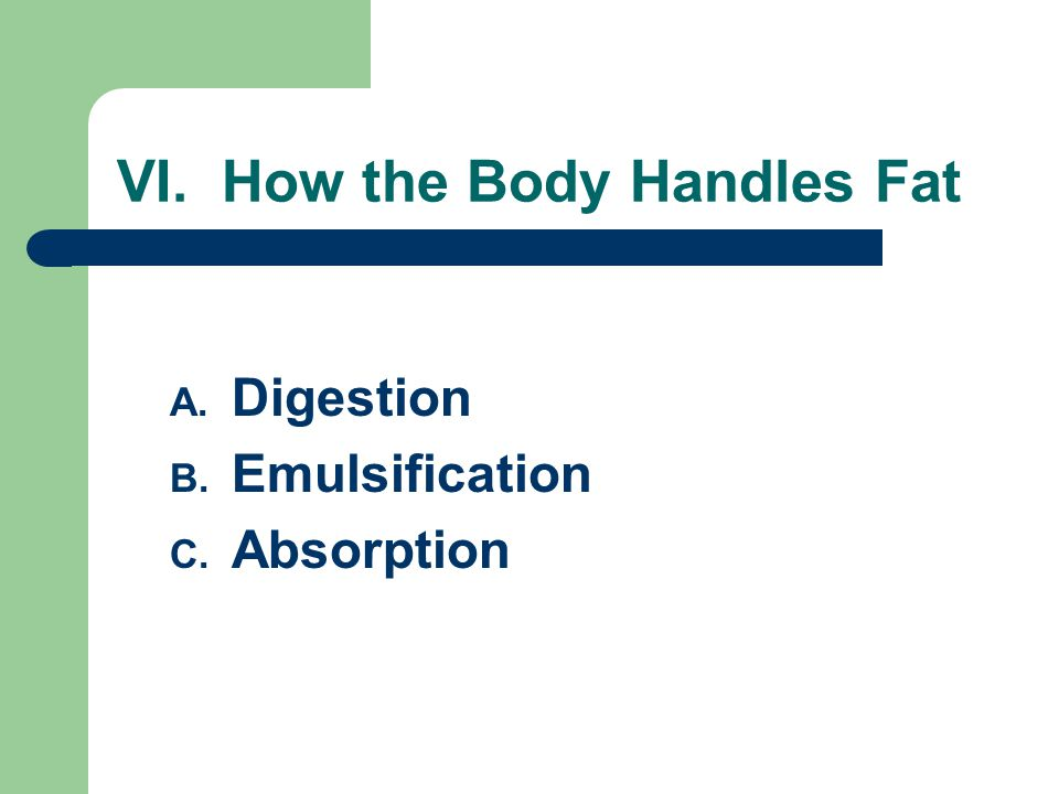 VI. How the Body Handles Fat