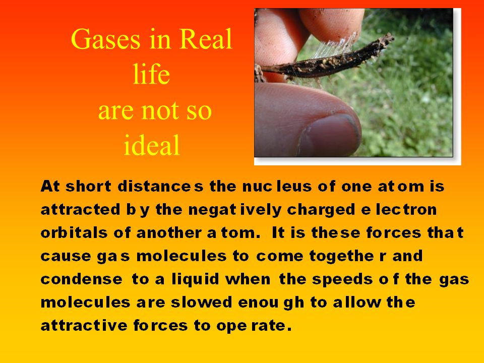 Gases in Real life are not so ideal