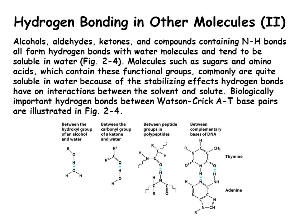 Hydrogen Bonding in Other Molecules (II)