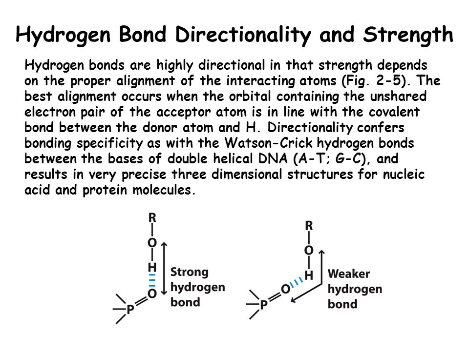 Hydrogen Bond Directionality and Strength
