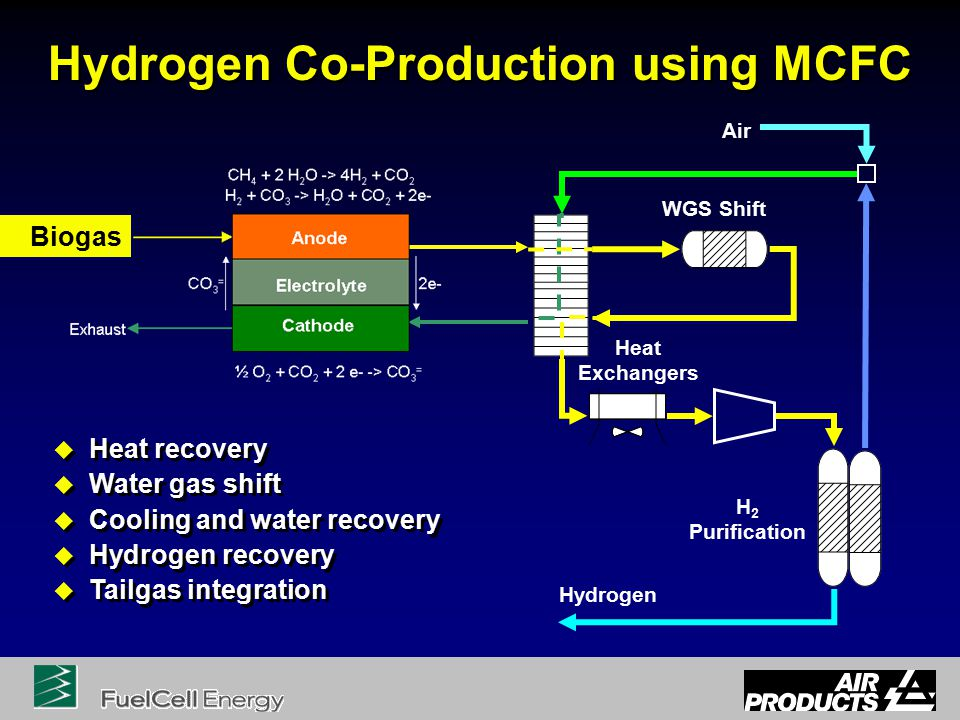 Hydrogen Co-Production using MCFC