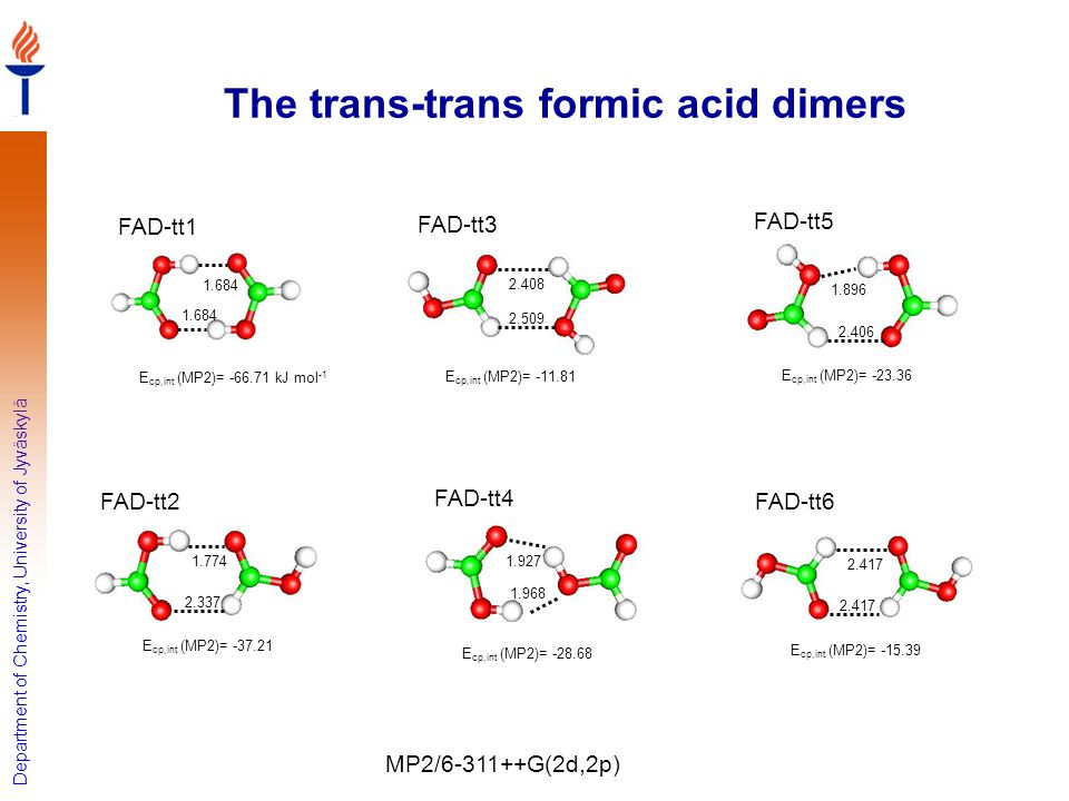 The trans-trans formic acid dimers