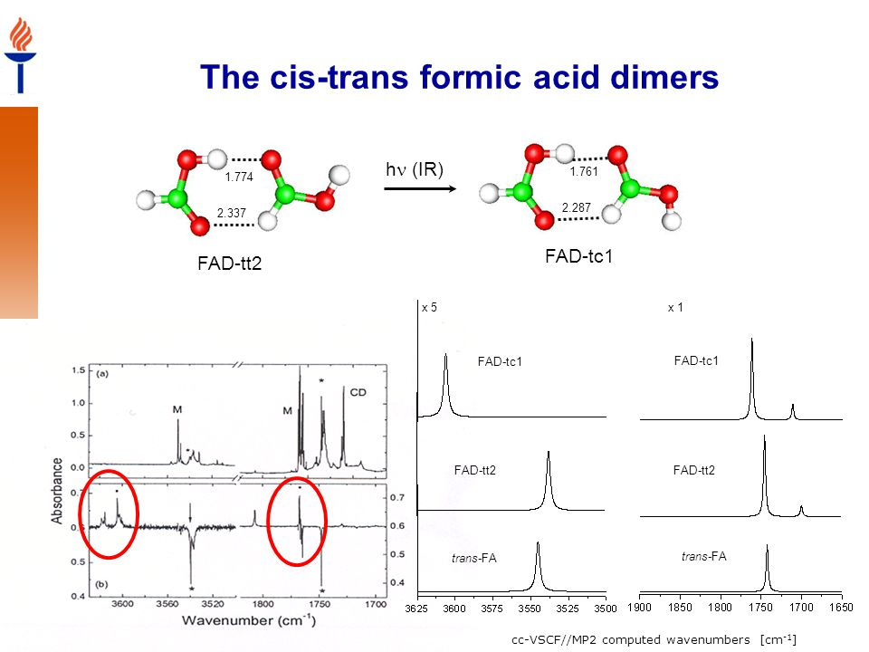The cis-trans formic acid dimers