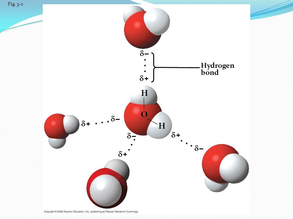 H O H  –  +  –  +  –  +  –  + Hydrogen bond —— —— Fig. 3-2