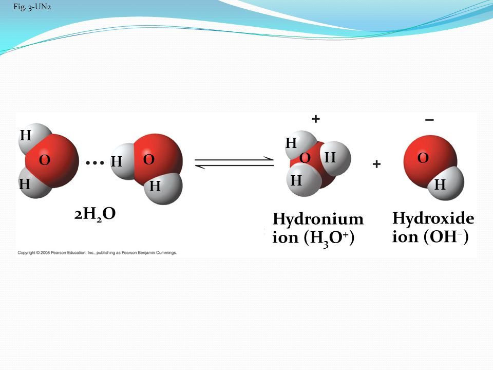 2H2O Hydronium Hydroxide ion (H3O+) ion (OH–) H H O O O H O H H H H H