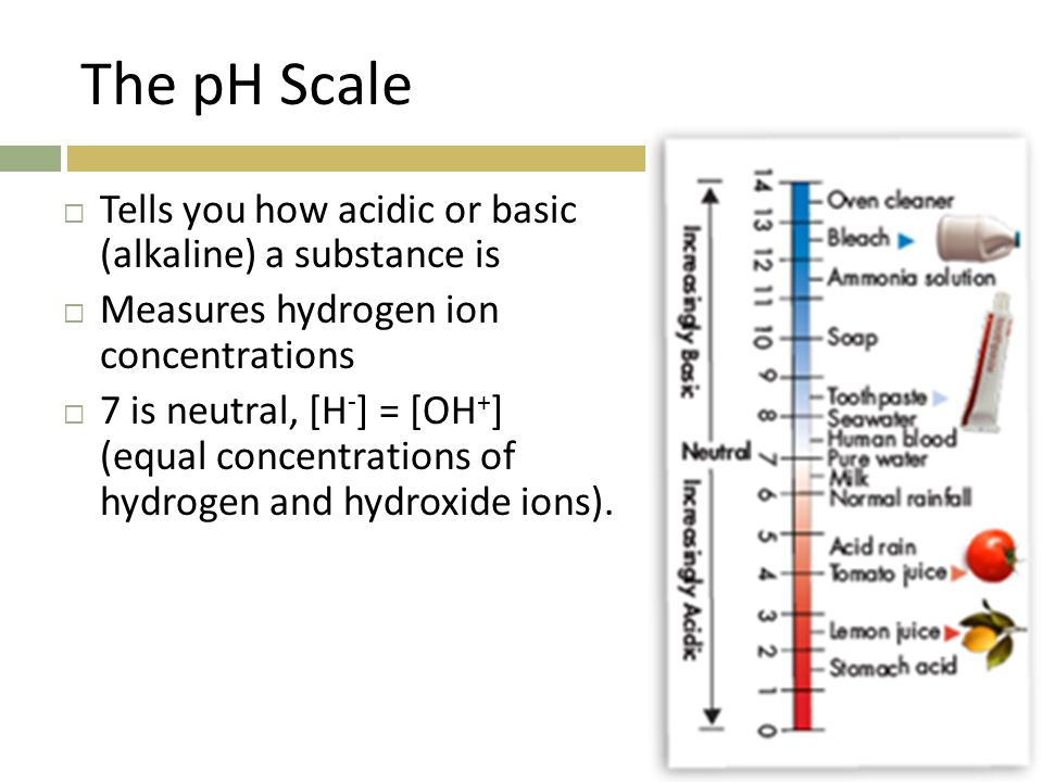 The pH Scale Tells you how acidic or basic (alkaline) a substance is