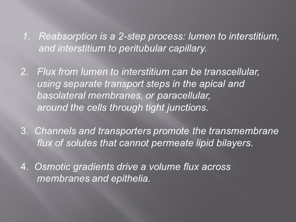 1. Reabsorption is a 2-step process: lumen to interstitium,