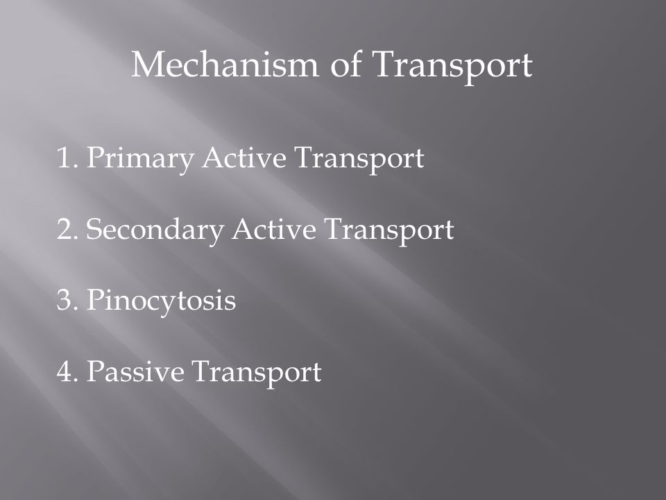 Mechanism of Transport