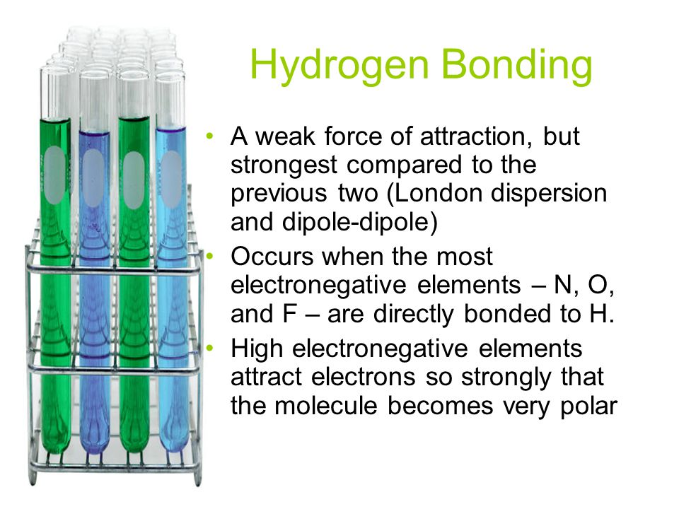 Hydrogen Bonding A weak force of attraction, but strongest compared to the previous two (London dispersion and dipole-dipole)