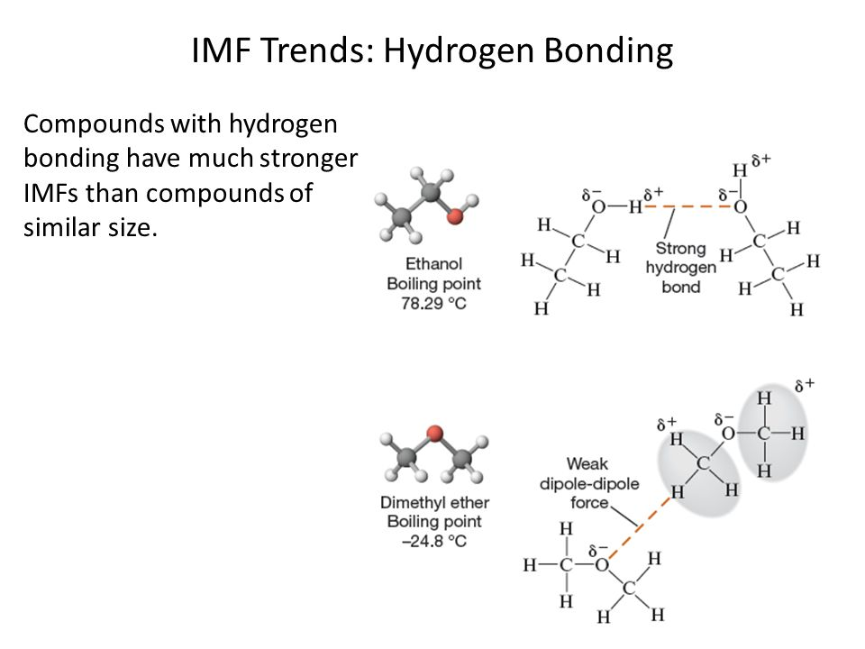 IMF Trends: Hydrogen Bonding