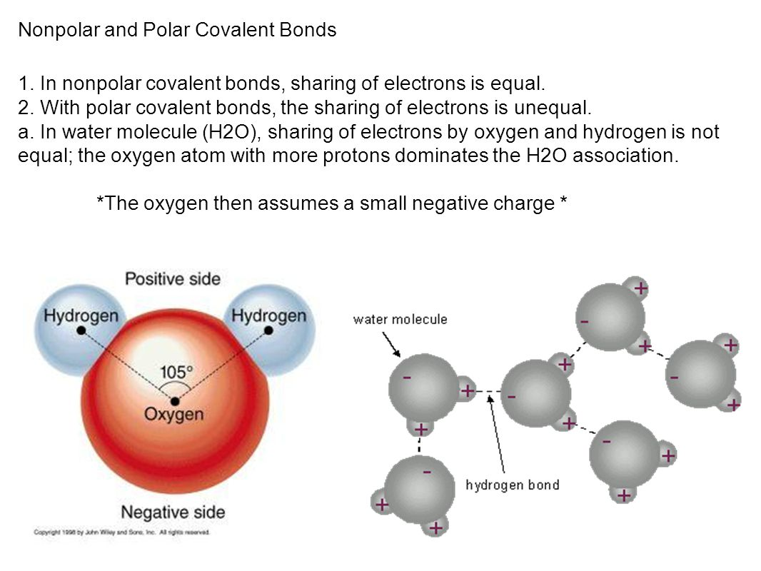 Nonpolar and Polar Covalent Bonds
