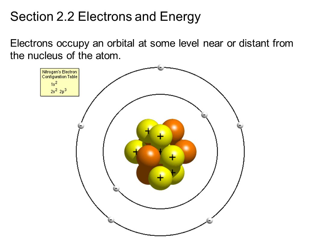 Section 2.2 Electrons and Energy Electrons occupy an orbital at some level near or distant from the nucleus of the atom.