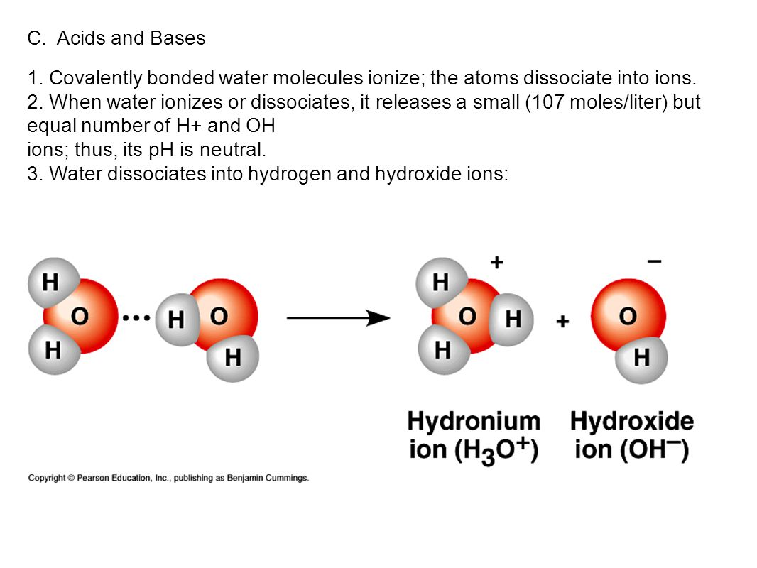 C. Acids and Bases 1. Covalently bonded water molecules ionize; the atoms dissociate into ions.