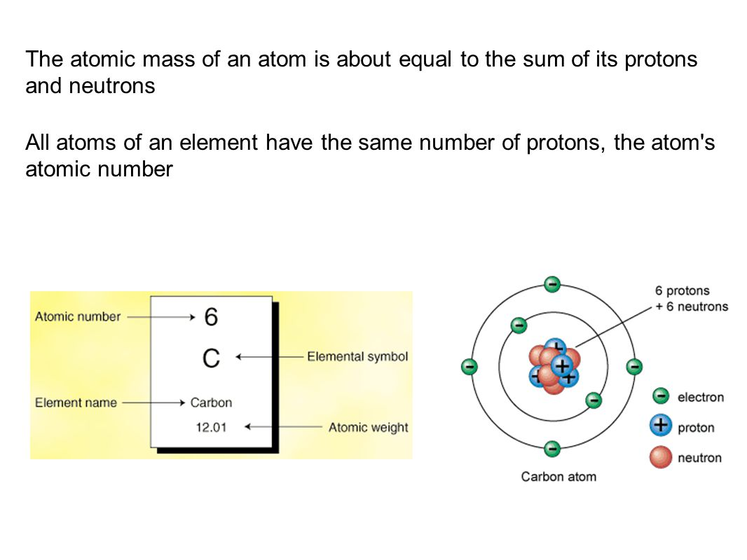 The atomic mass of an atom is about equal to the sum of its protons and neutrons