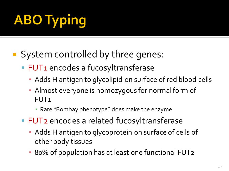 ABO Typing System controlled by three genes: