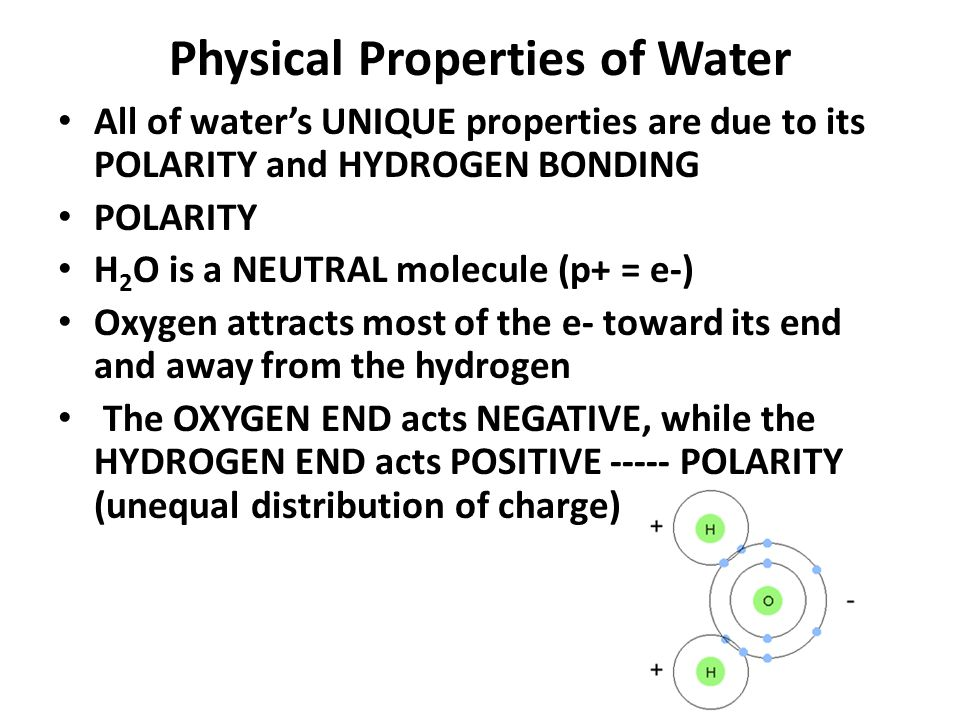 chemical and physical properties of water The temperature of water affects some of the important physical properties and characteristics of water: thermal capacity, density, specific weight, viscosity, surface tension, specific conductivity, salinity and solubility of dissolved gases and etc chemical and biological reaction rates increase with increasing temperature.