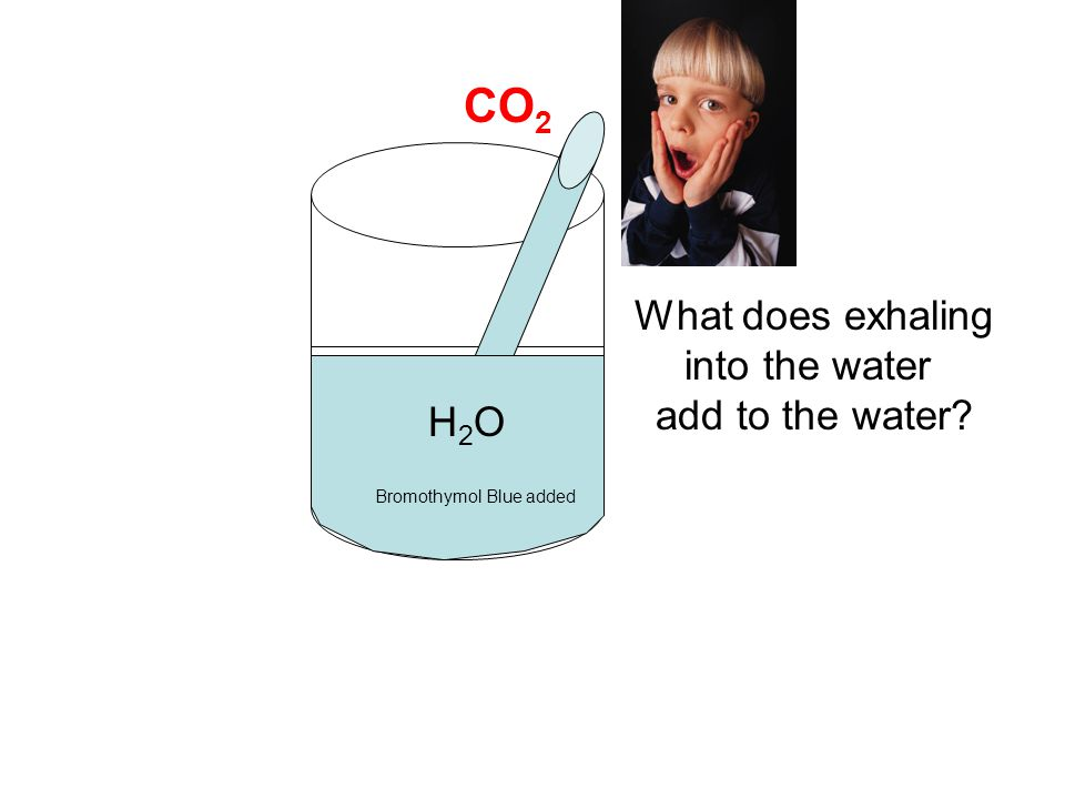 CO2 What does exhaling into the water add to the water H2O