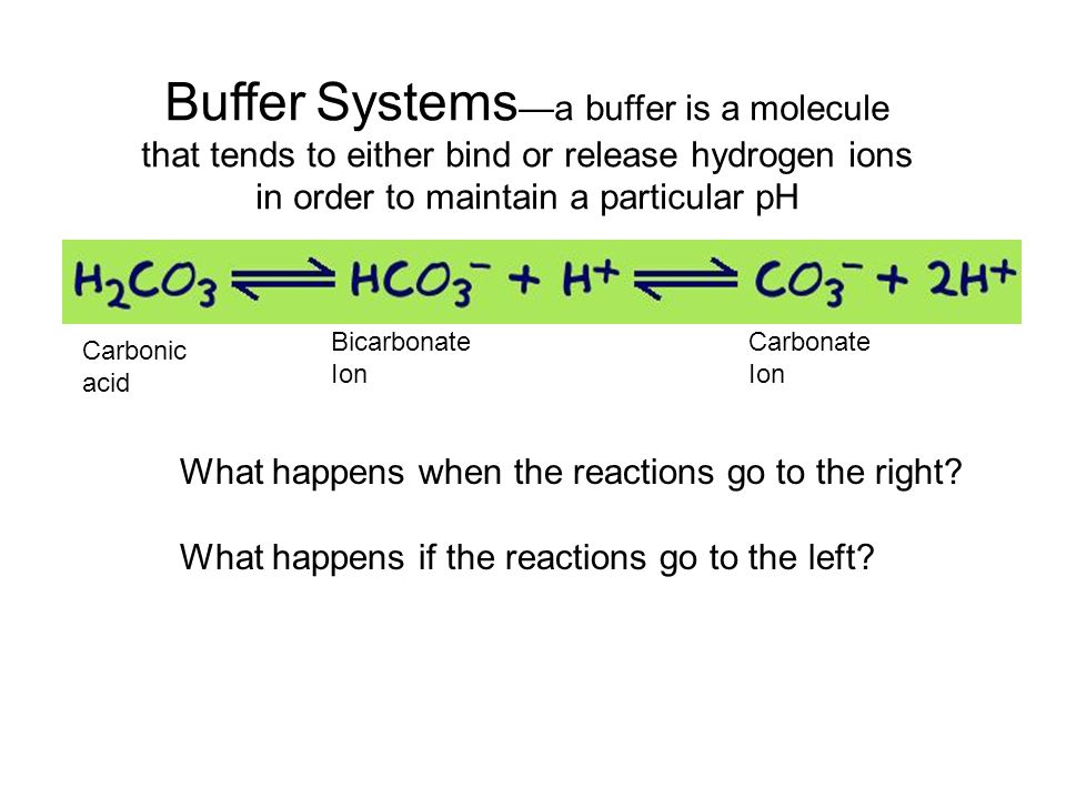 Buffer Systems—a buffer is a molecule