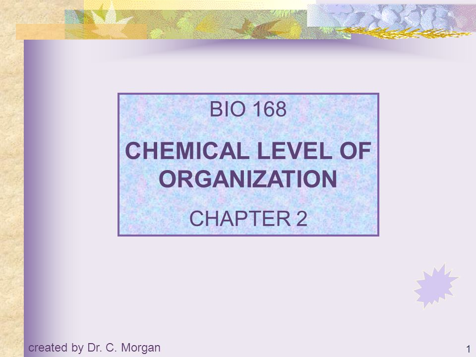 CHEMICAL LEVEL OF ORGANIZATION