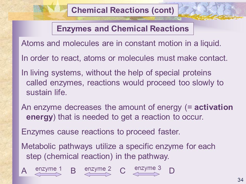 Chemical Reactions (cont) Enzymes and Chemical Reactions