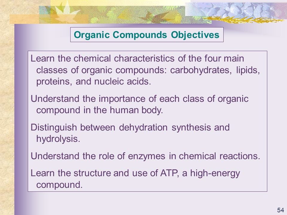 Organic Compounds Objectives