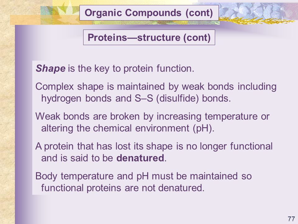 Organic Compounds (cont) Proteins—structure (cont)