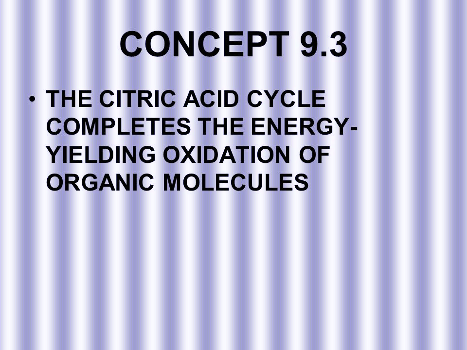 CONCEPT 9.3 THE CITRIC ACID CYCLE COMPLETES THE ENERGY-YIELDING OXIDATION OF ORGANIC MOLECULES