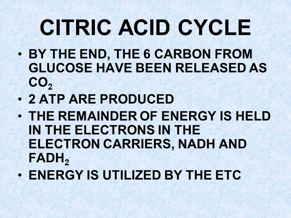 CITRIC ACID CYCLE BY THE END, THE 6 CARBON FROM GLUCOSE HAVE BEEN RELEASED AS CO2. 2 ATP ARE PRODUCED.