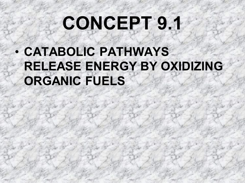 CONCEPT 9.1 CATABOLIC PATHWAYS RELEASE ENERGY BY OXIDIZING ORGANIC FUELS