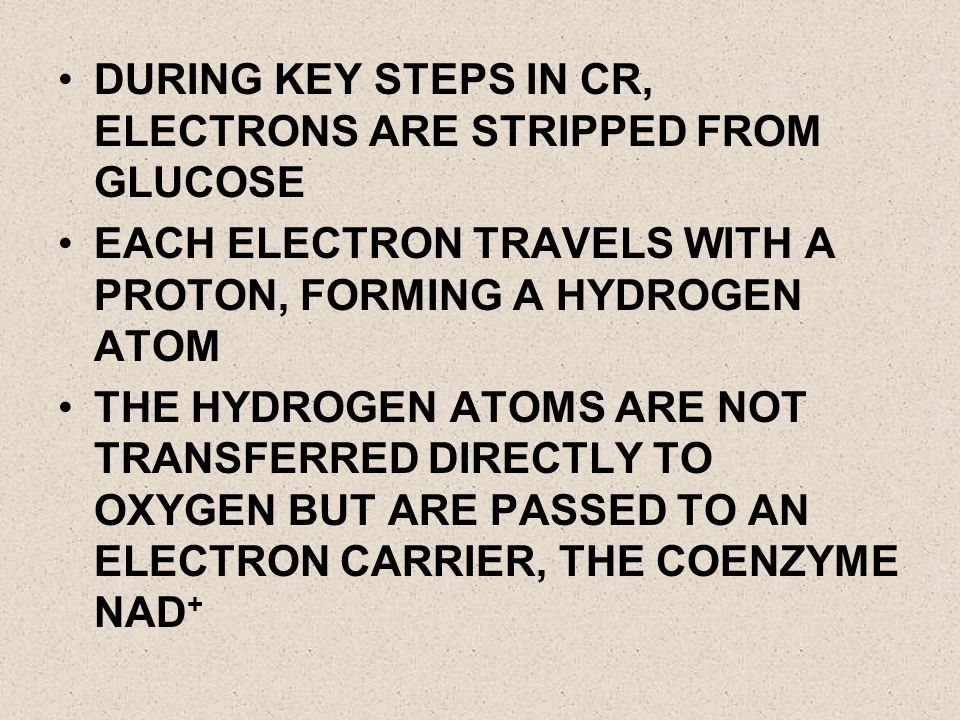 DURING KEY STEPS IN CR, ELECTRONS ARE STRIPPED FROM GLUCOSE