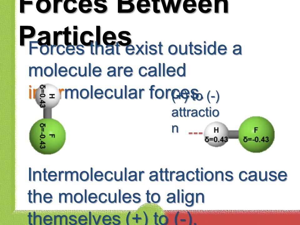 Forces Between Particles