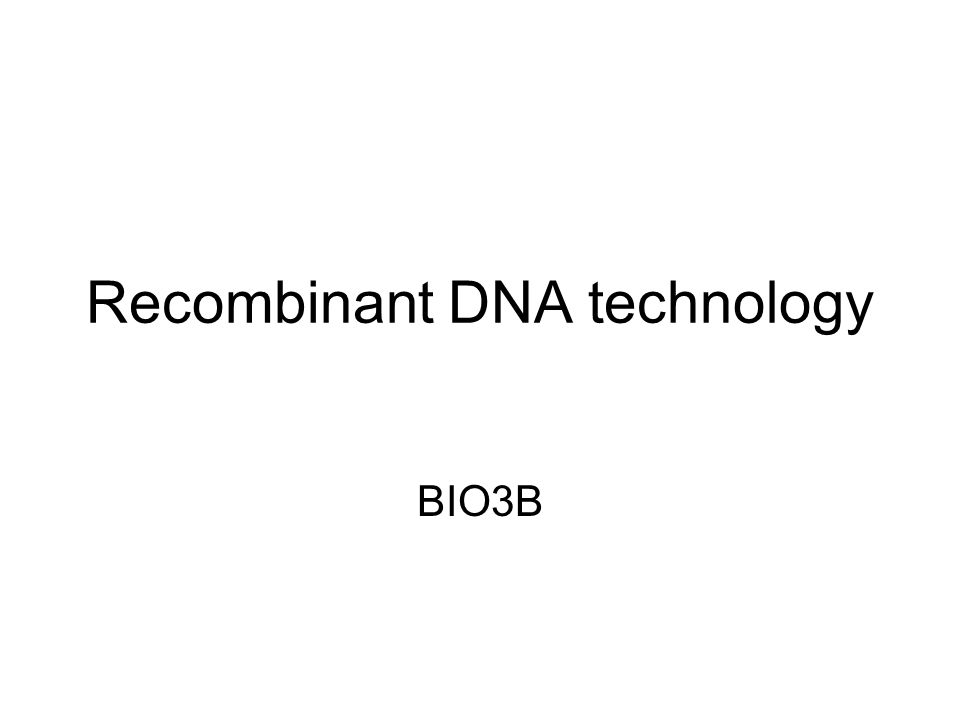 dna technology worksheet Termolak – Dna Technology Worksheet