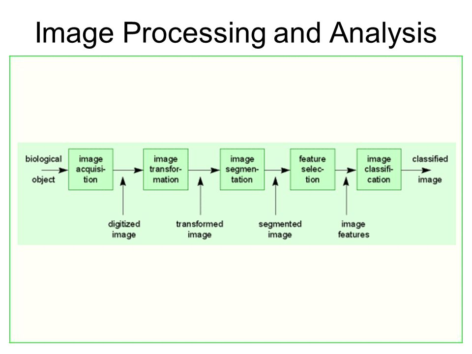 Image Processing and Analysis