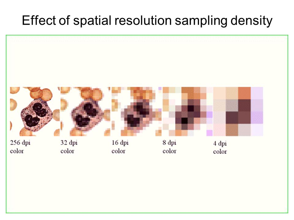 Effect of spatial resolution sampling density