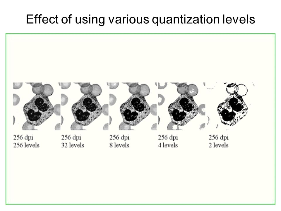 Effect of using various quantization levels