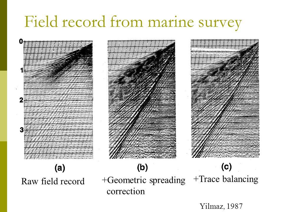 Field record from marine survey