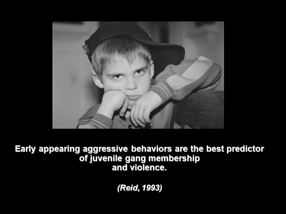 Early appearing aggressive behaviors are the best predictor of juvenile gang membership