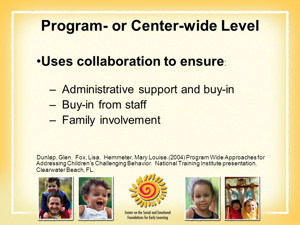 Program- or Center-wide Level