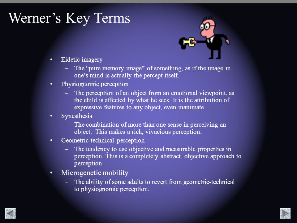 Werner's Key Terms Microgenetic mobility Eidetic imagery