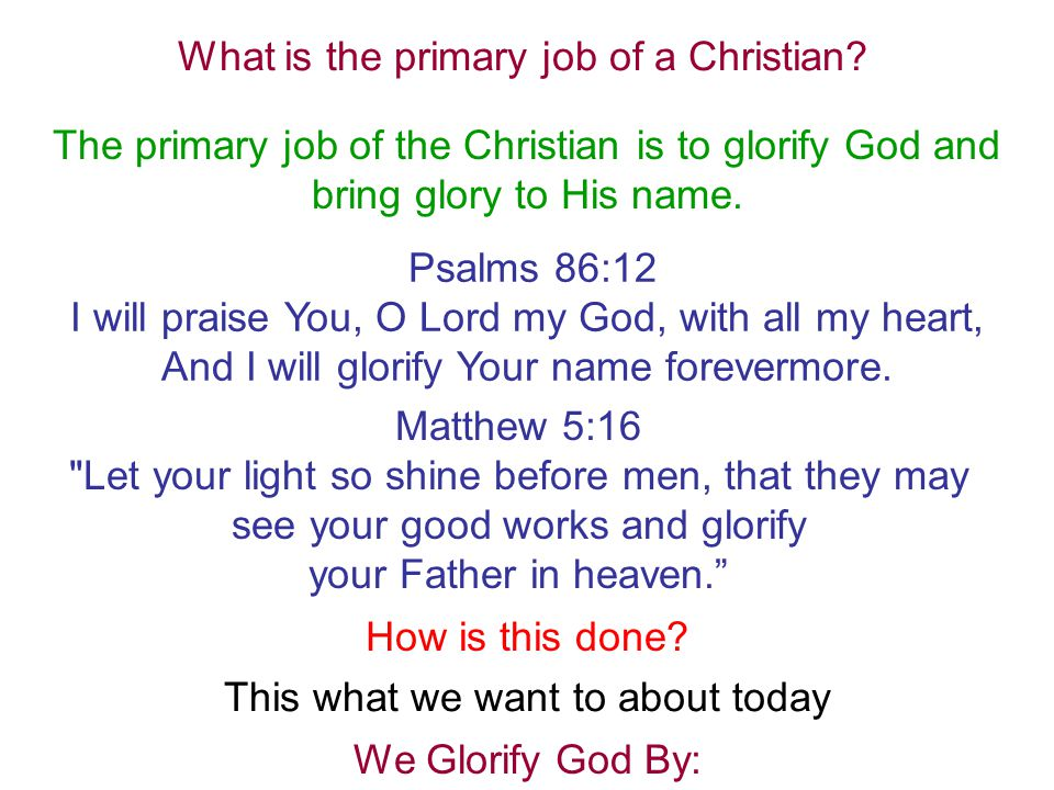 What is the primary job of a Christian