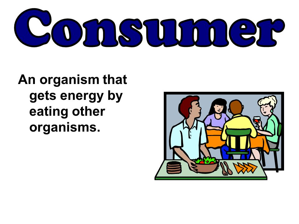 Consumer An organism that gets energy by eating other organisms.