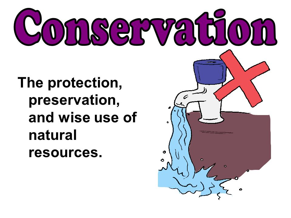 Conservation The protection, preservation, and wise use of natural resources.