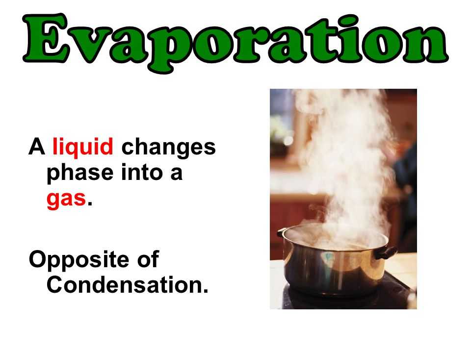 Evaporation A liquid changes phase into a gas.